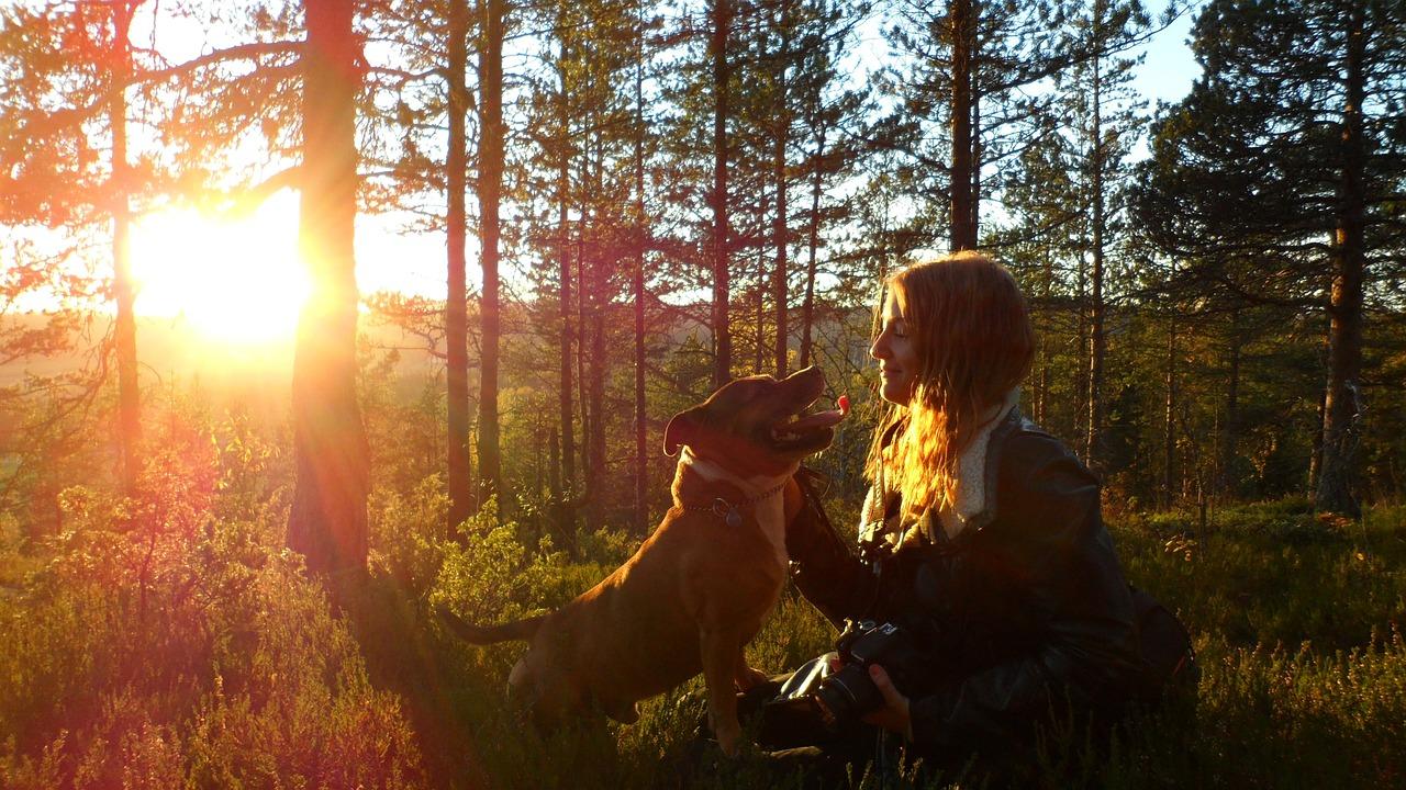 Hund und Frauchen vor Sonnenuntergang