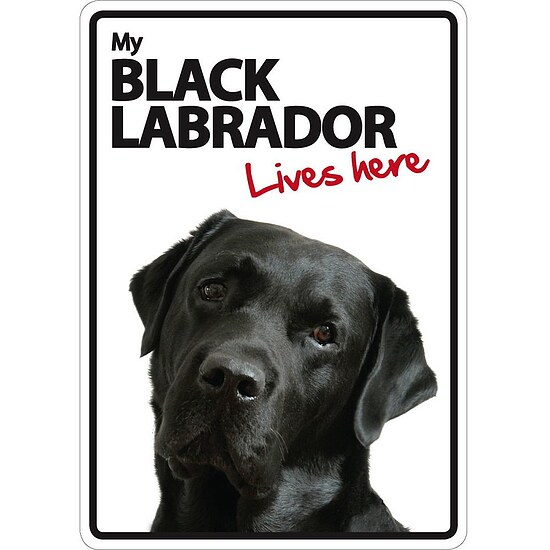 Bild 1 - Schild - My Black Labrador lives here