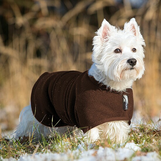 Bild 1 - Hundemantel Warmup Fleece/Frottee mini braun
