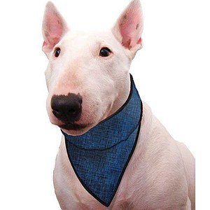 Aqua Coolkeeper Cooling Pet Bandana Blue XL 61-68 cm (Restposten)