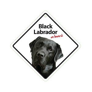 Autoschild - Black Labrador on board