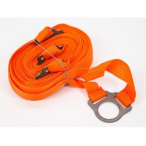 Obedience Boxband orange