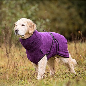 Hundemantel Dryup Cape bilberry