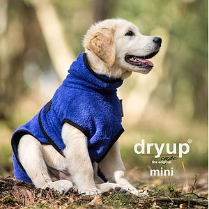 Hundemantel Dryup Cape Mini blueberry