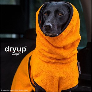 Hundemantel Dryup Cape clementine
