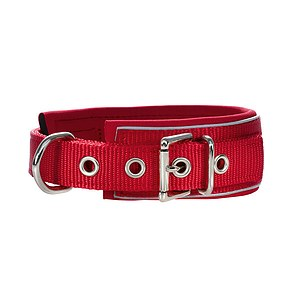 Hunter Halsband Neopren Reflect rot