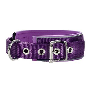 Hunter Halsband Neopren Reflect violett