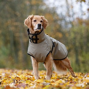 Hundemantel Active Cape +