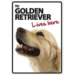 Schild - My Golden Retriever lives here