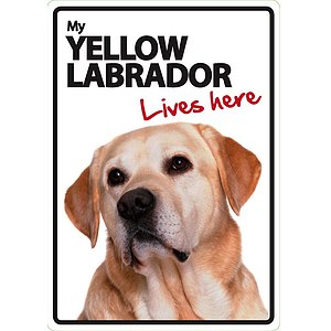 Schild - My Yellow Labrador lives here